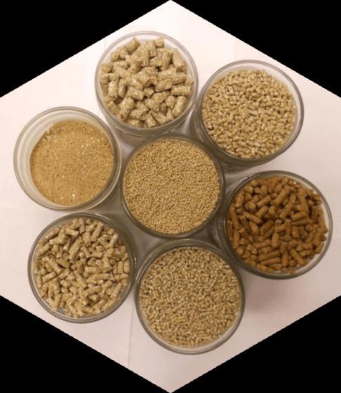 Хіміко-токсикологічні дослідження кормів